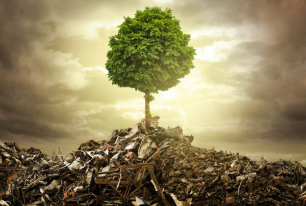 Energy from waste – getting it off the ground