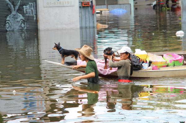 Designing a resilient city: Bangkok's flooding problem