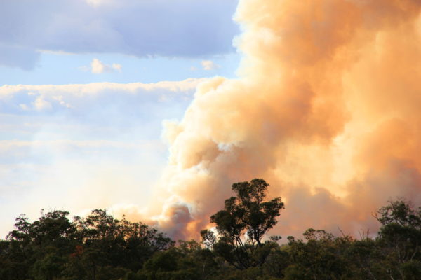 Victorian schools to receive bushfire safety upgrades