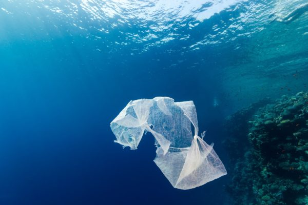 Is a charge on plastic bags the solution to our plastic pollution problem?