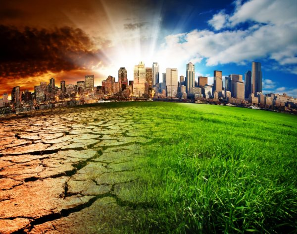 Carbon positive roadmap will pave the way for climate action