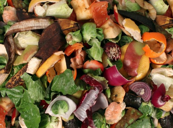 Keeping organics out of Melbourne landfills