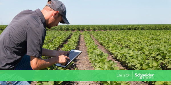 Towards a sustainable future: new IoT solution improves agricultural irrigation