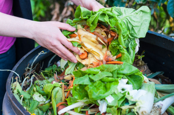Compost crusade: Australians encouraged to 'think big' about food waste