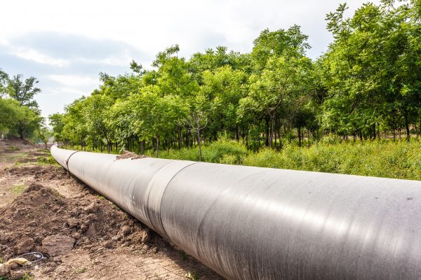 Turning on the tap: new pipeline for farming businesses
