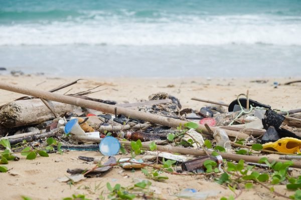 Boomerang Alliance shines spotlight on plastic pollution