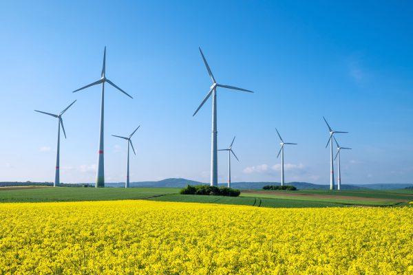 Renewable energy to entirely power Stawell farm