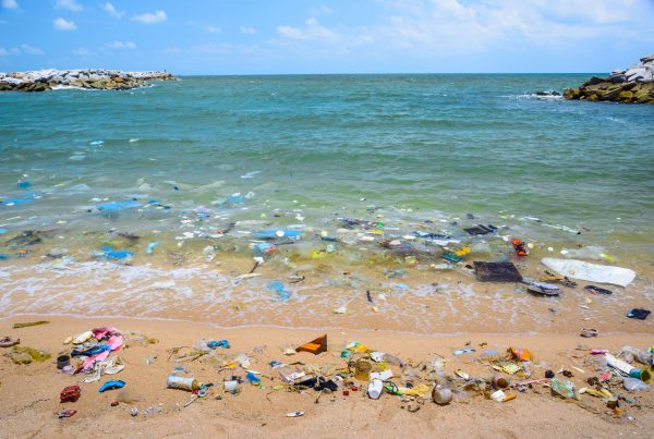 Towards a pollution-free planet