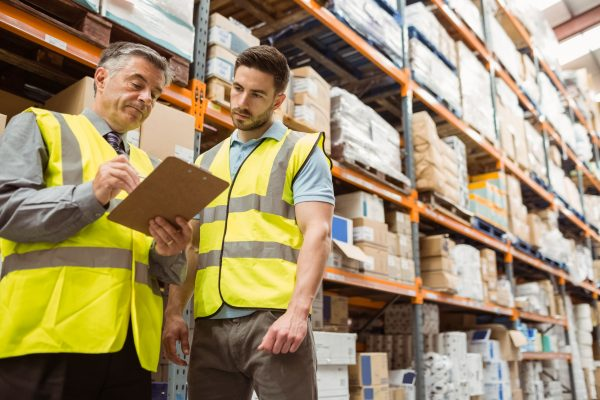 New software and IT logistics shaping the future of warehouse management