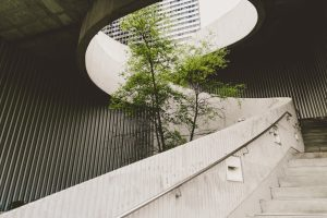 How to align sustainability with business strategy –part two
