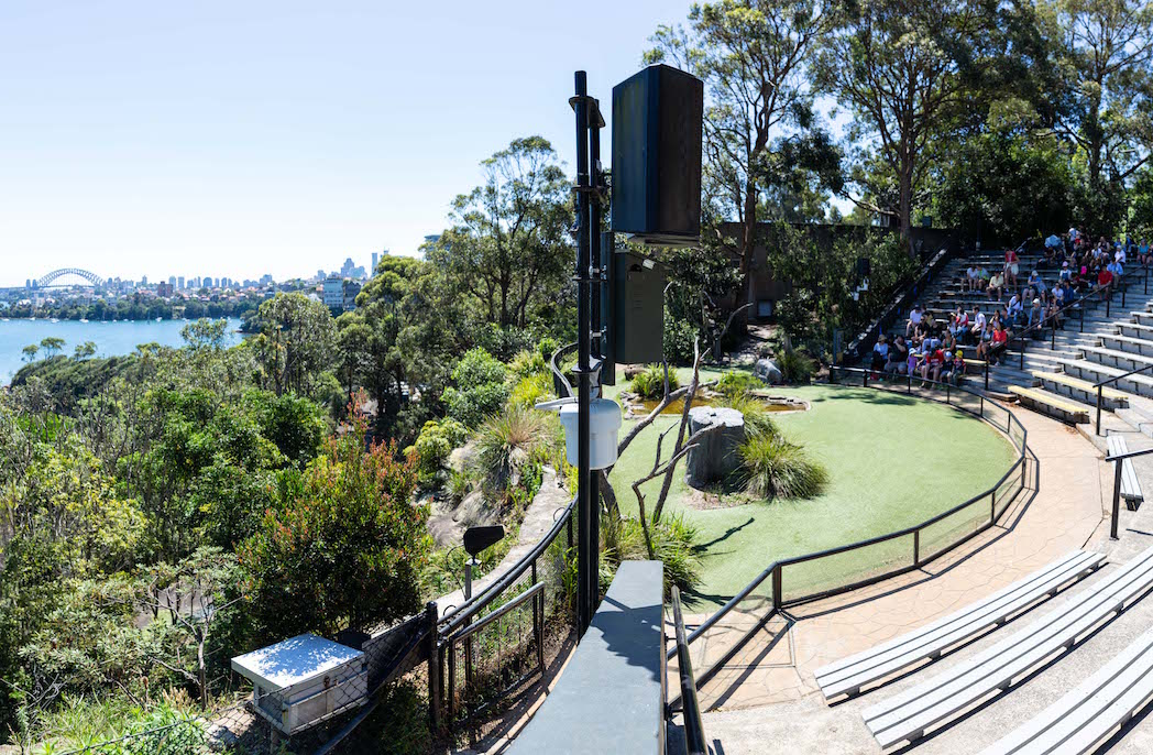 The new tech partnership that helped Taronga Zoo change its spots